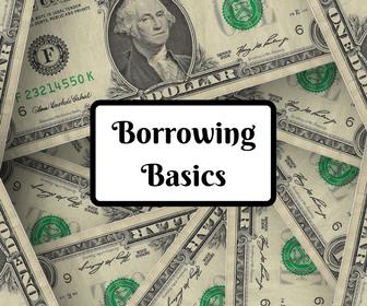 t-Borrowing Basics.png