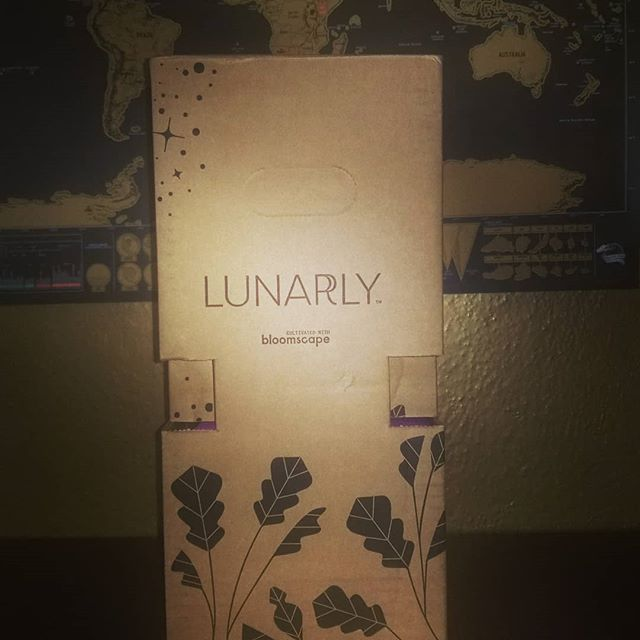Omg got @mylunarly box today. My plant needs a little tlc, but we'll nurse her back to health no problem! . . . . . . . #newmoonnewme #lunarlybox #plants #amethyst #sturgeonmoon #pachasoapco #settingintentions #huntressofhappy #unboxing