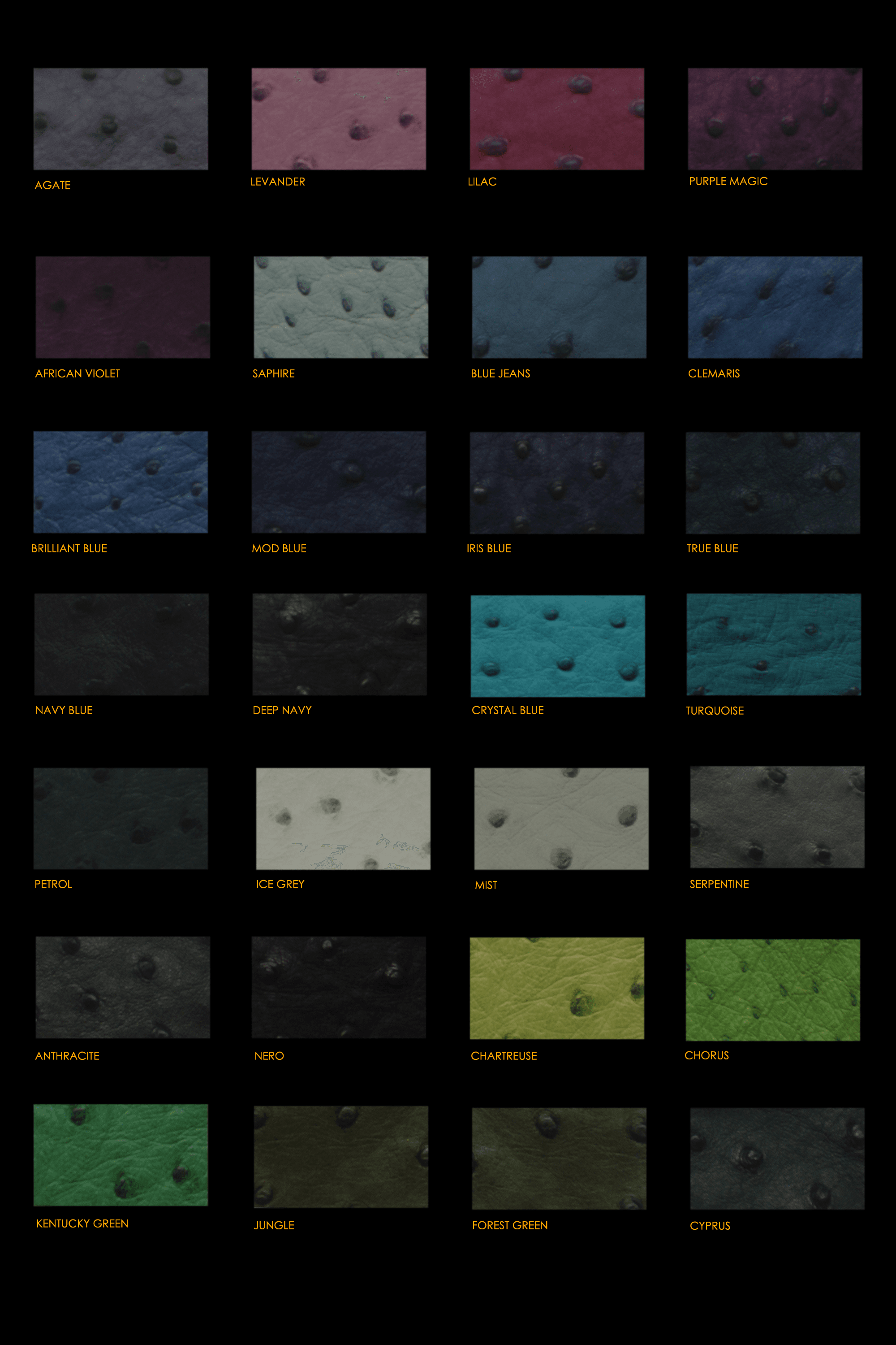 Ostrich Leather Swatches 2.png