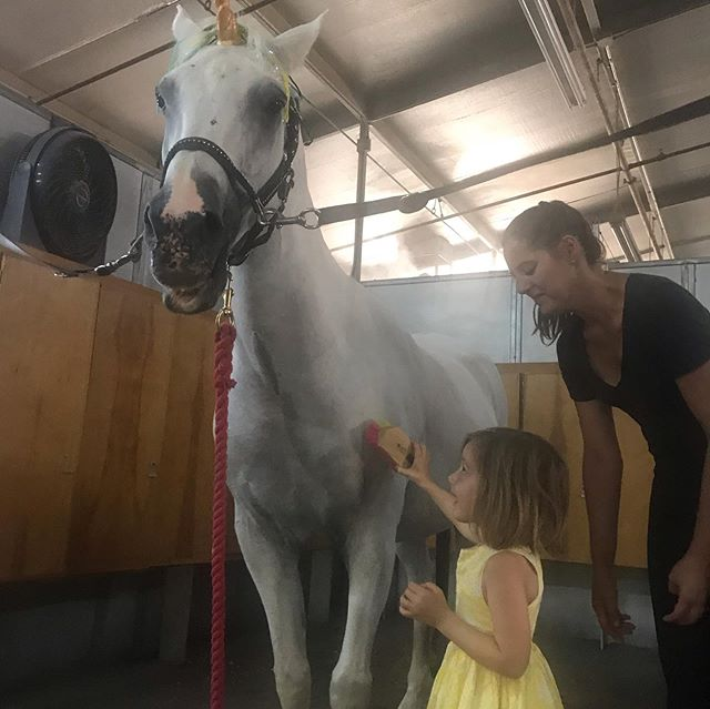 Clara wanted to see a real Unicorn, and Aunt @suzannejulia1 delivered. Pure magic. Suzanne, we love you!