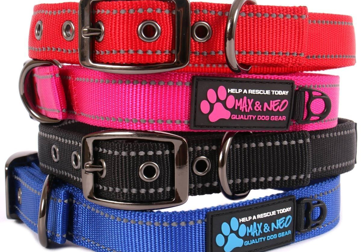 Provides collars and leashes for our animals.