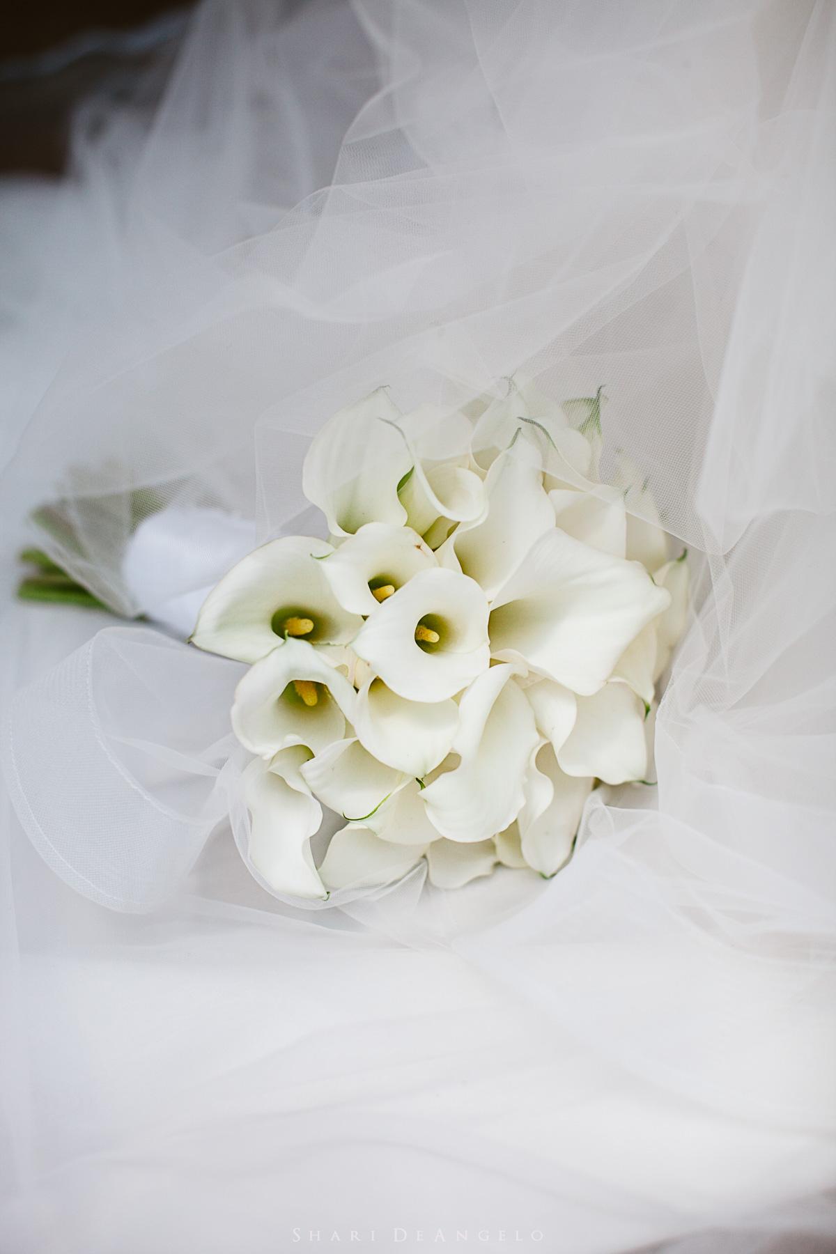 06 Pafa Wedding.jpg