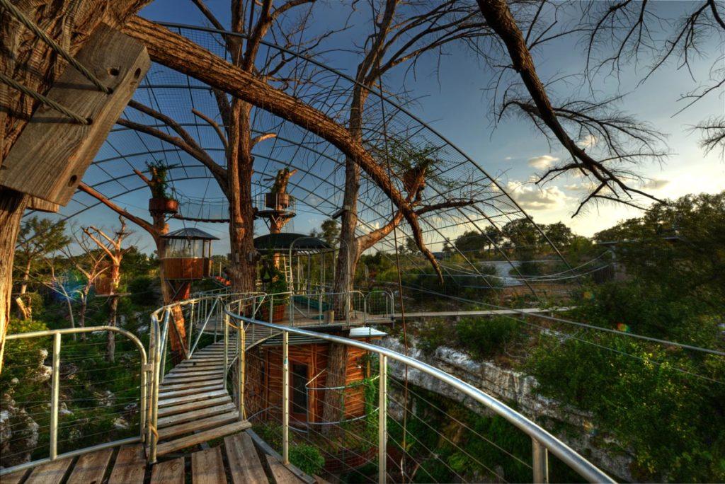 Cypress Canopy Tours.jpg