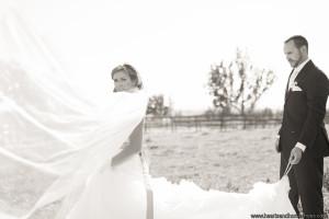 Gilliam_Hogue_Hearts__Horseshoes_Photography_Hogue371_low