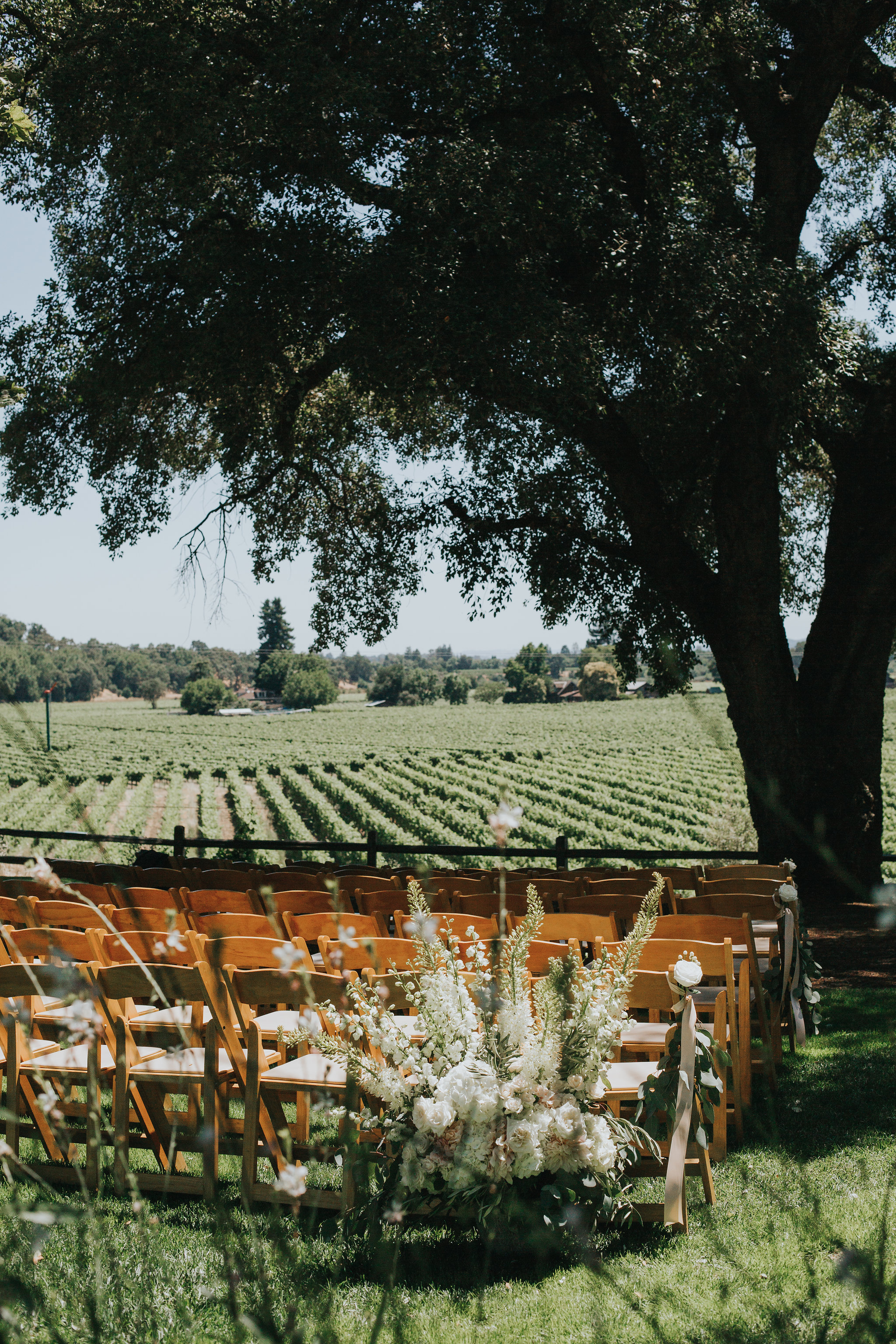 Rus-Farm-Wedding-Healdsburg-Vineyard-Oak-Tree-Ceremony-Heald-Wedding-Consulting-HWC.jpg