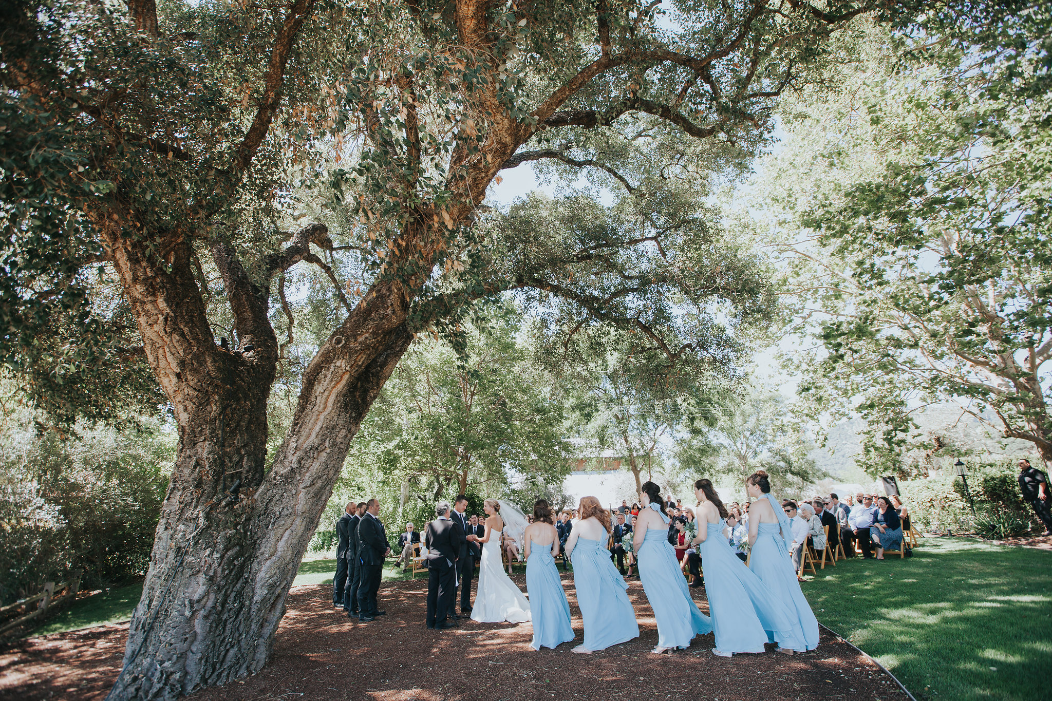 rus-farm-wedding-healdsburg-ceremony-oak-tree-heald-wedding-consulting-hwc.jpg