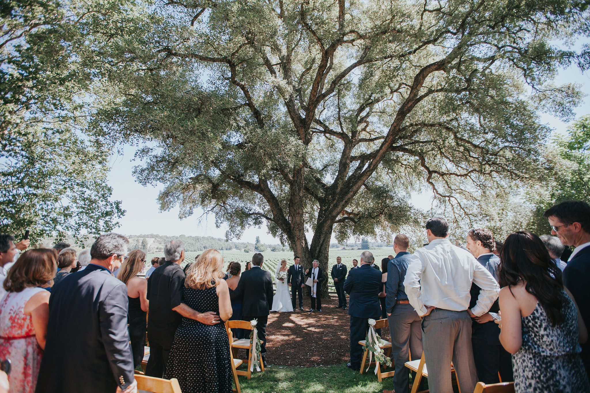 Rus-farm-wedding-healdsburg-heald-wedding-consulting-hwc-ceremony-oak-tree.jpg