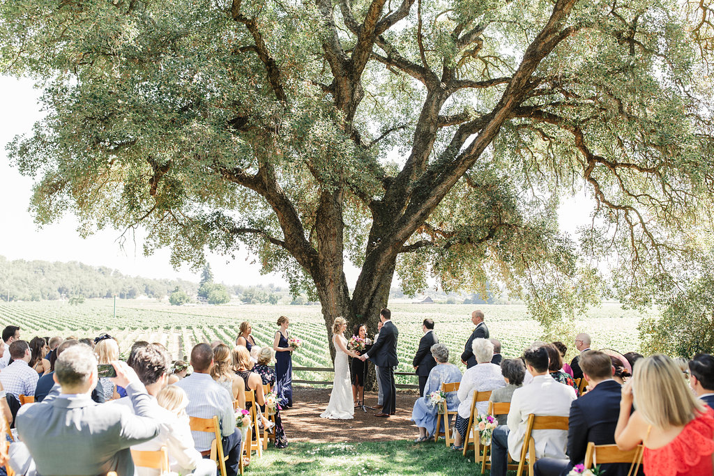 Rus-Farm-Wedding-Ceremony-Summer-olive-tree.jpg