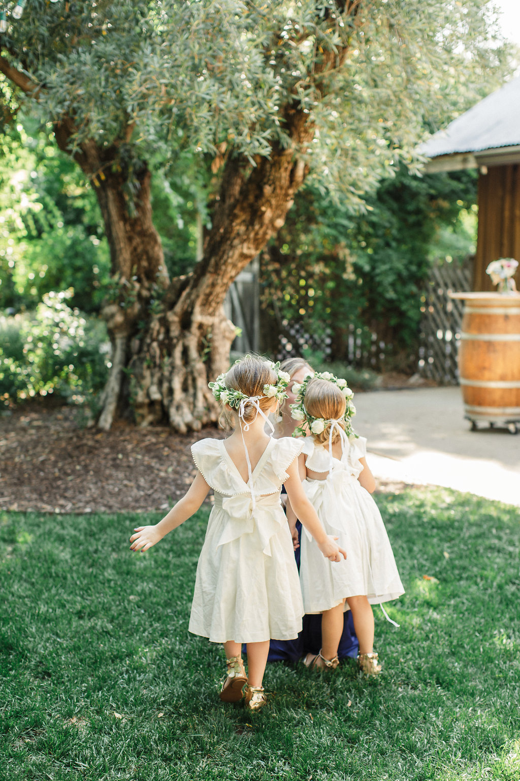 Rus-Farm-Wedding-Healdsburg-olive-grove-flower-girls.jpg