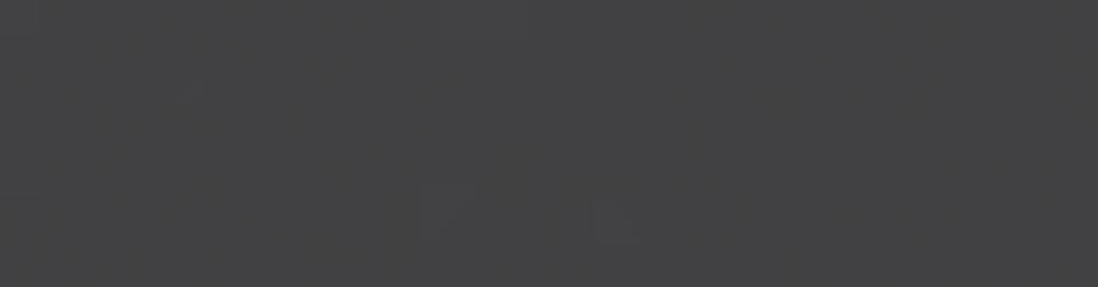 SPACE_logo_transparentgrey_web (1).png