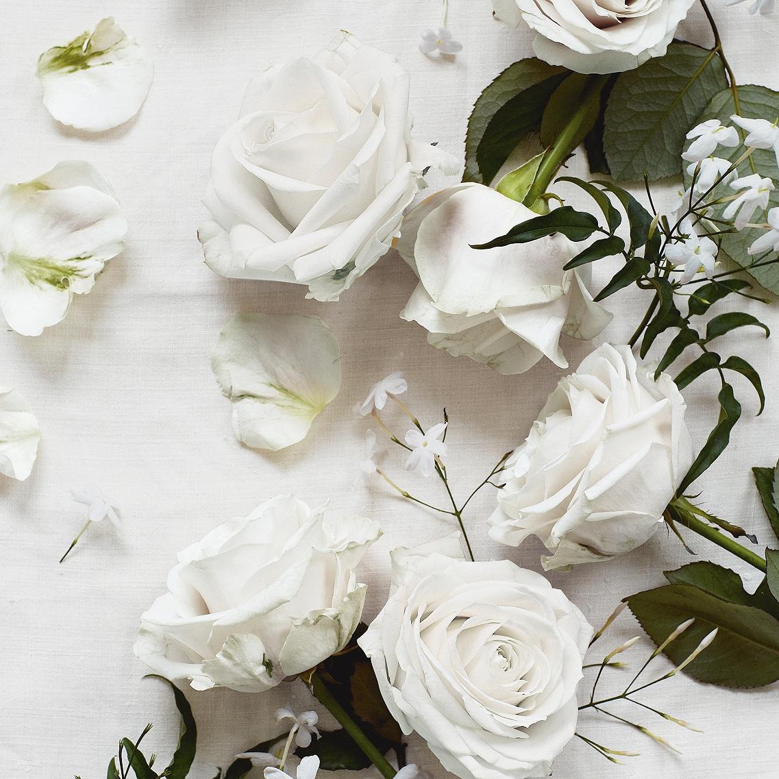 The White Company - Shampoo, Conditioner, Bath & Shower GelFlowersScented Jasmine, Rose & Neroli(image courtesy The White Company)