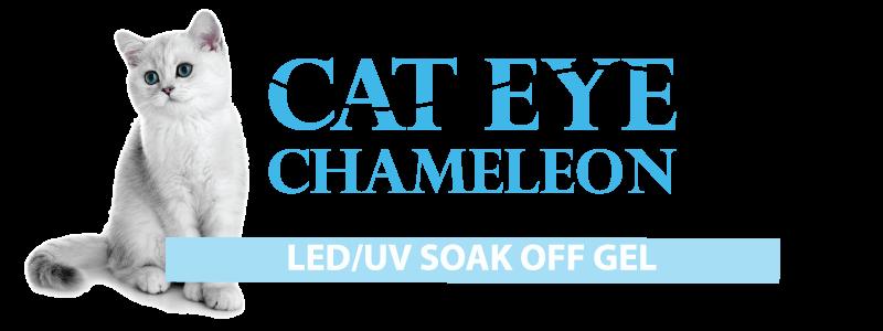 cat-eye-chameleon.png