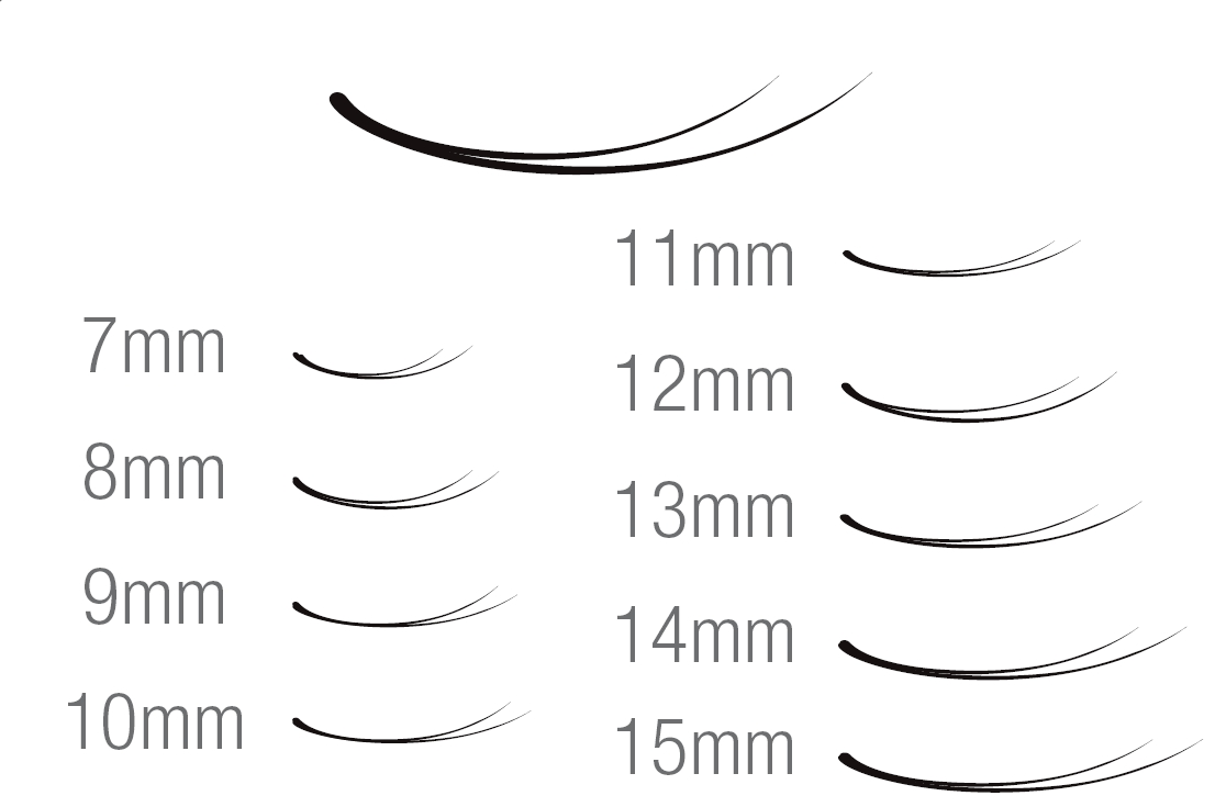HAMI SYNTHETIC EYELASH EXTENSION V-LASH - LINE.jpg