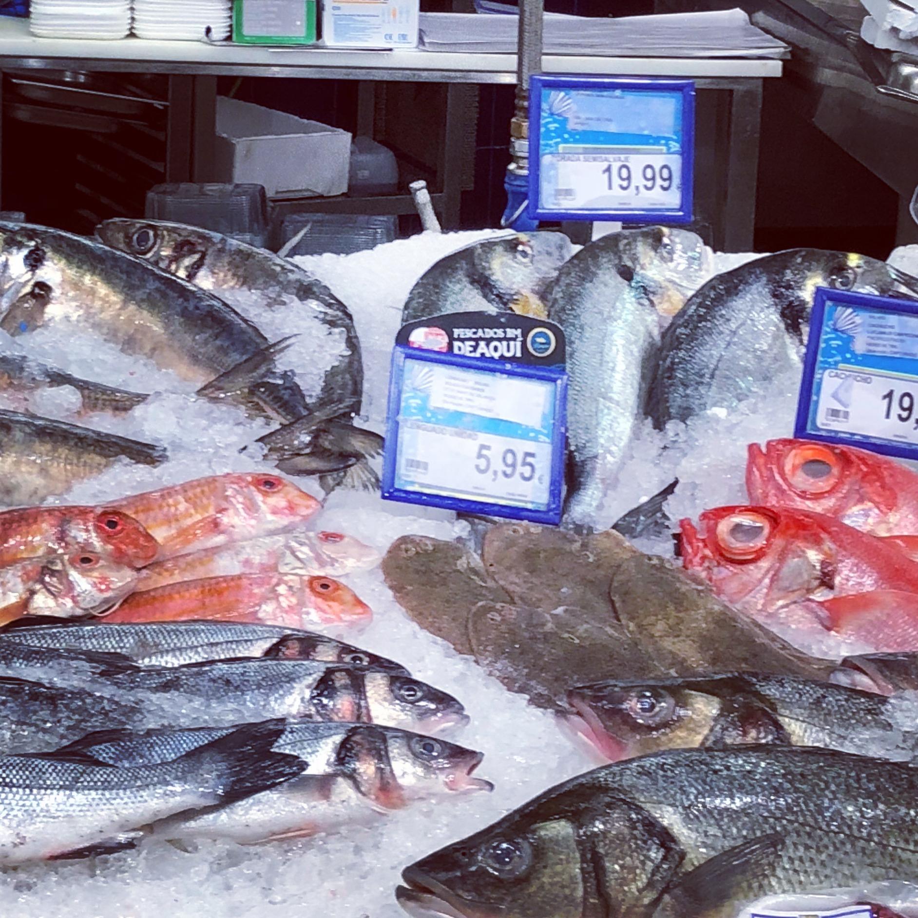 Fresh Fish. - I see you.