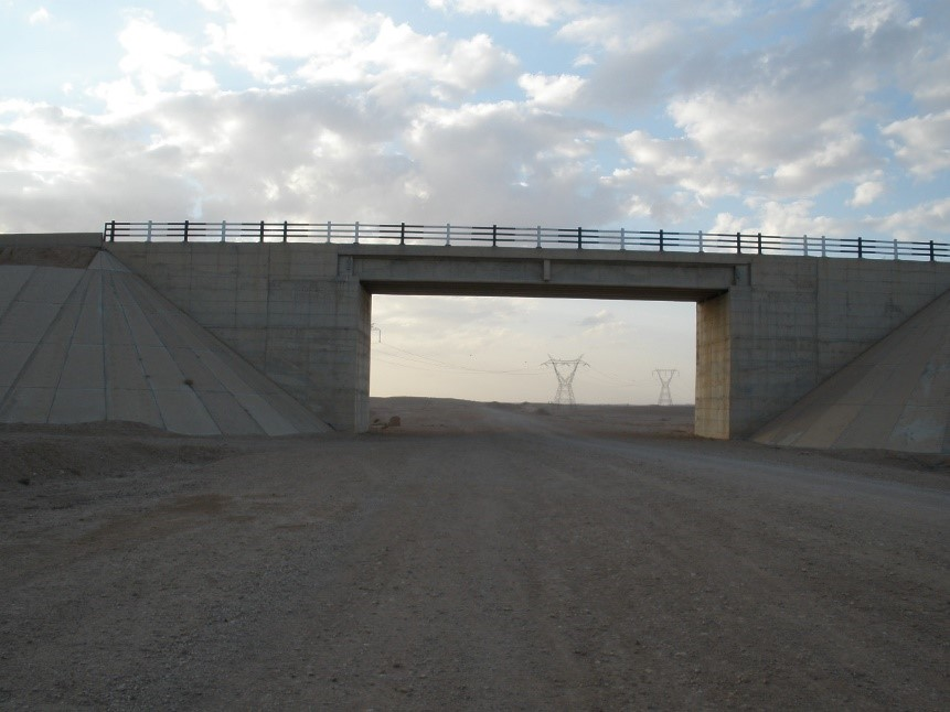 Syria - EIS for Infrastructure