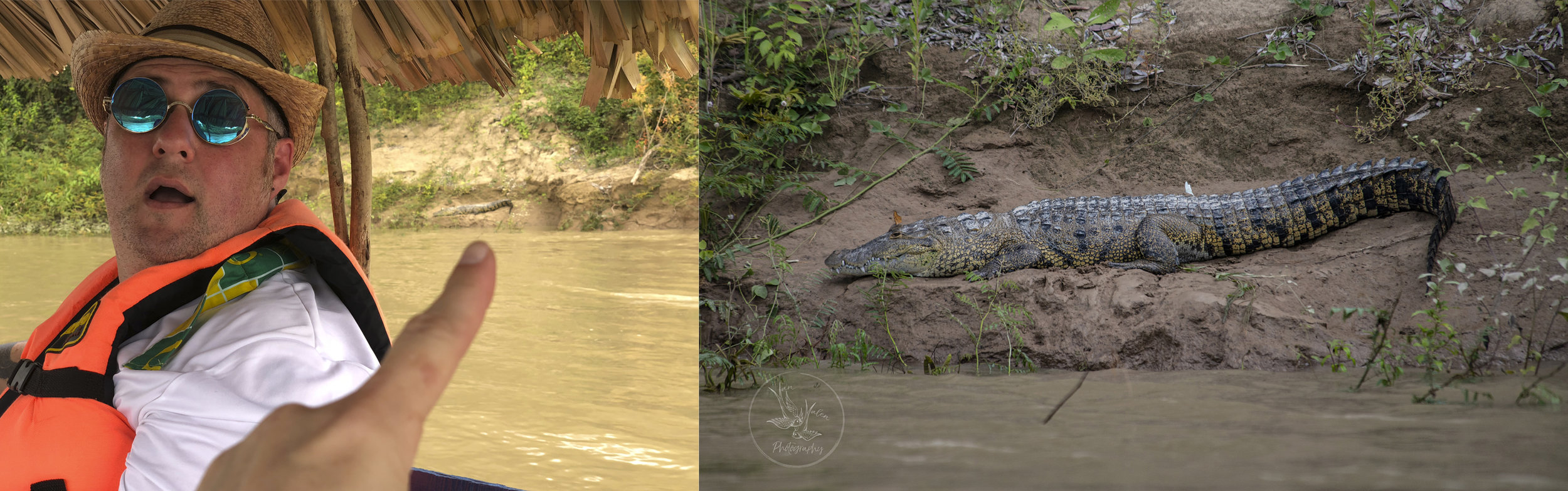 crocodiles on the Usumacinta River, notice the butterflies perched on the beast (the croc, not my husband)