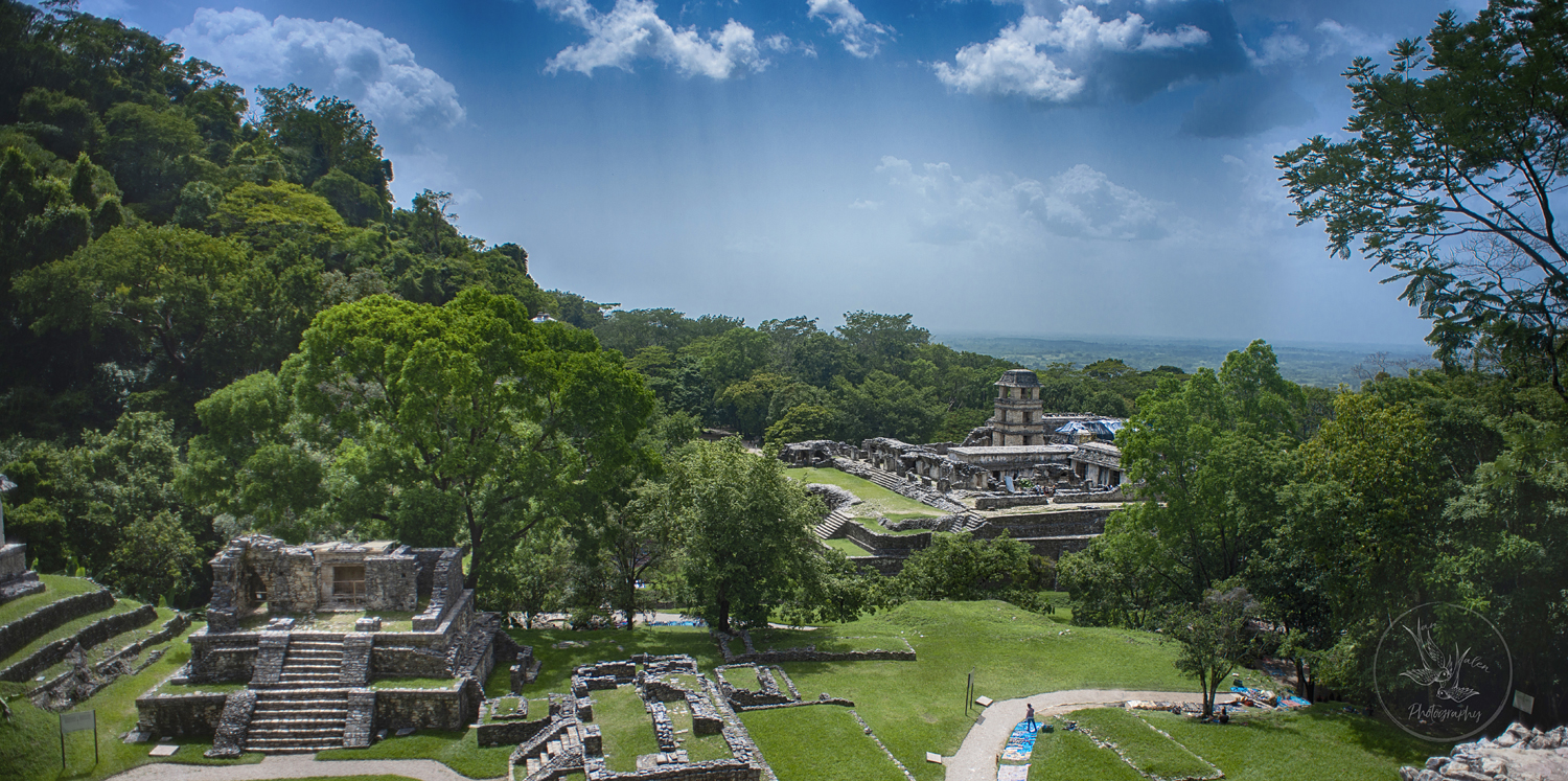 the view looking down from The Temple of the Cross, Palenque