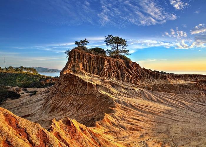 Torrey Pines Bluff 1233x860.jpg