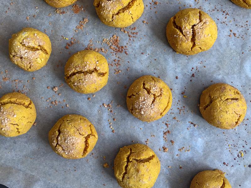 paleo pumpkin bites 3-2.jpg