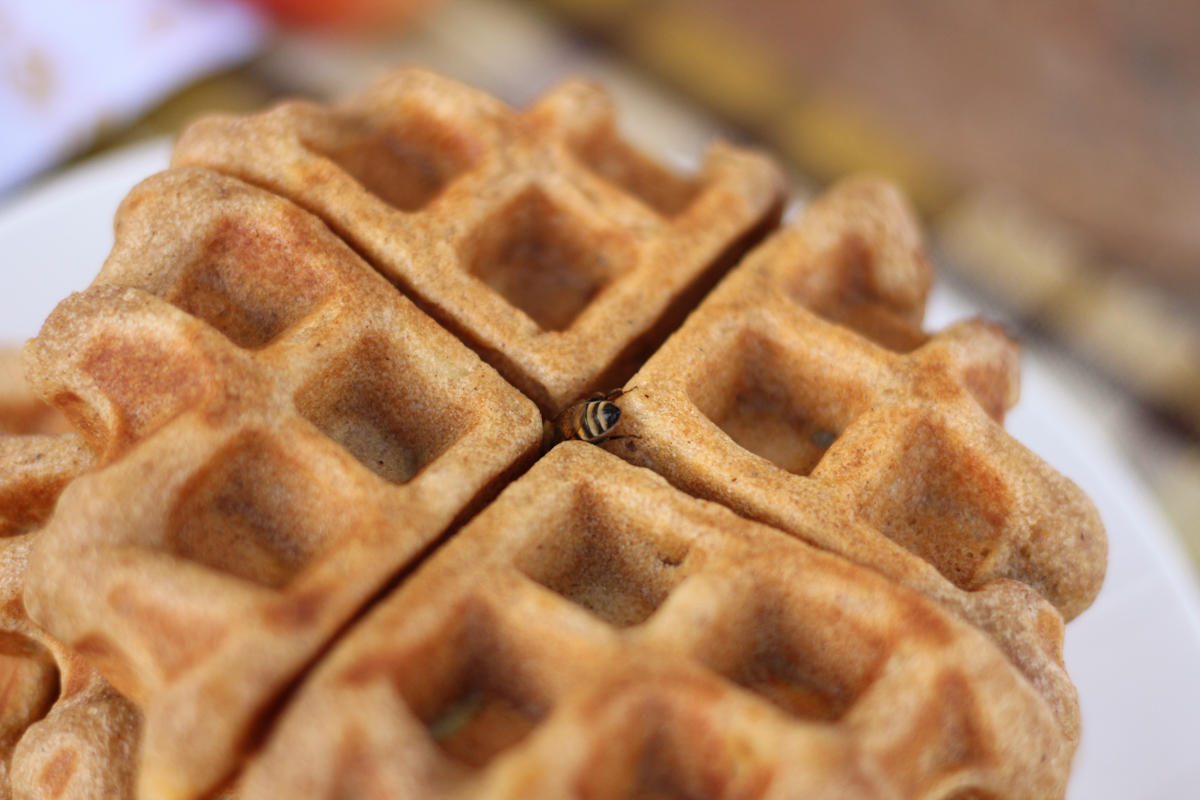 waffles-4.jpg