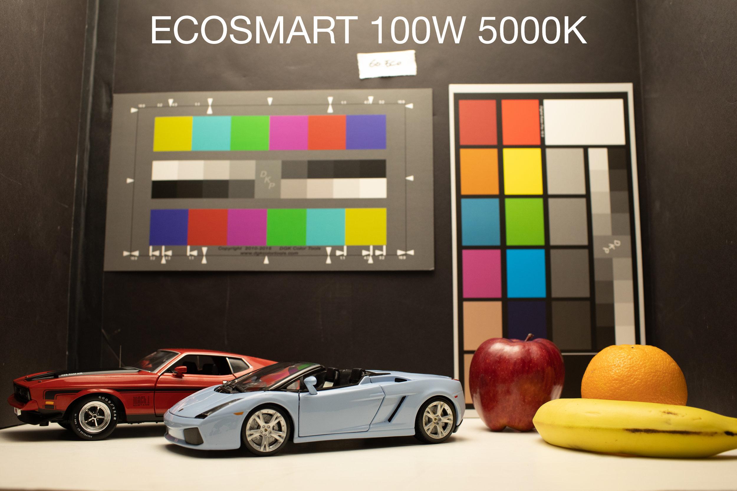 ECOSMART.jpg