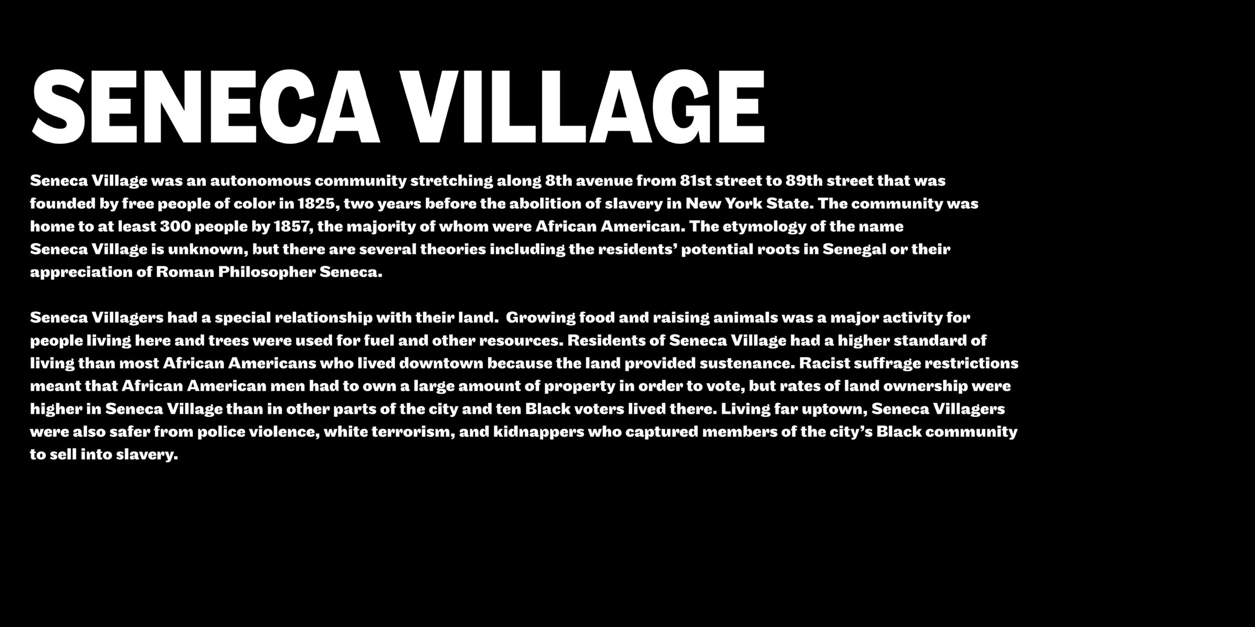 Seneca Village Web3.png