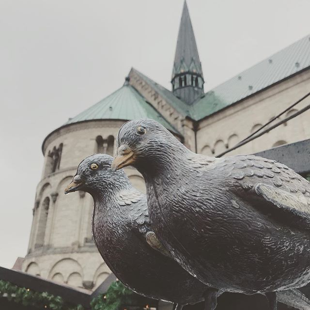 The are wet and freezing, but we have warm soup 🍲 come and get your heat at the marketplace at Ribe domkirke #soup #pigeon #christmasmarket #wildgame