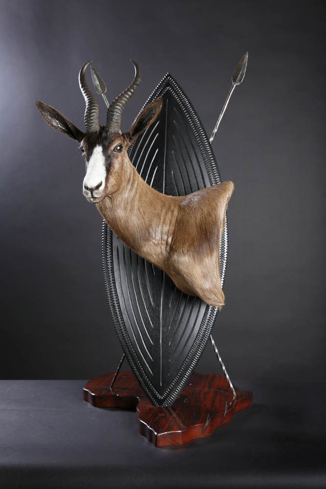 Springbok Shield.jpg