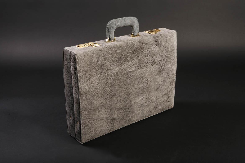 Rhino Briefcase_standing.jpg