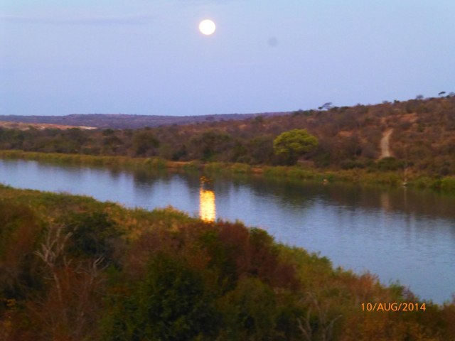 Hunt South Africa Letaba River41.jpg