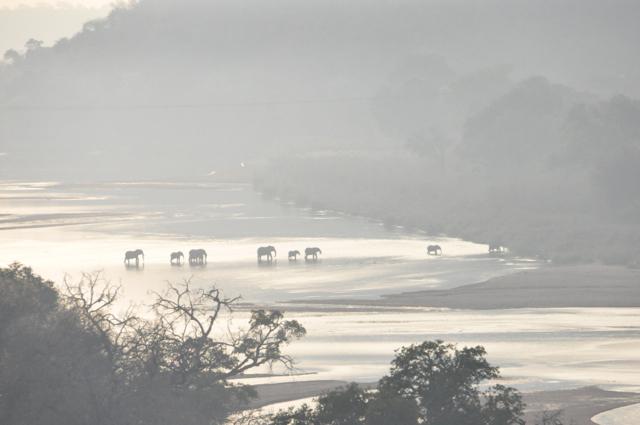 Hunt South Africa Letaba River4.jpg
