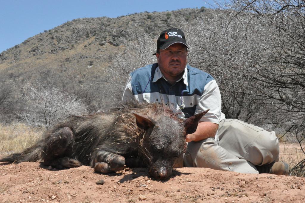 Brown Hyena Hunt01.JPG