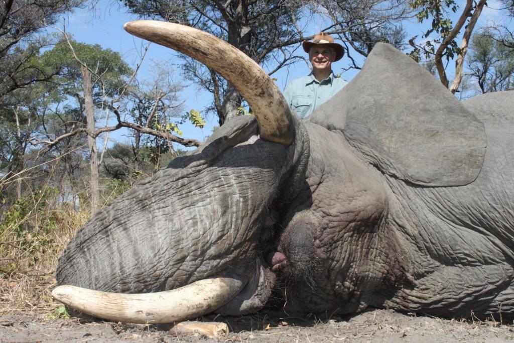 elephant (9).jpg