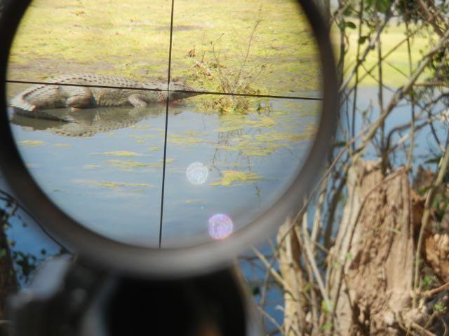 Hunt in Africa 58.jpg