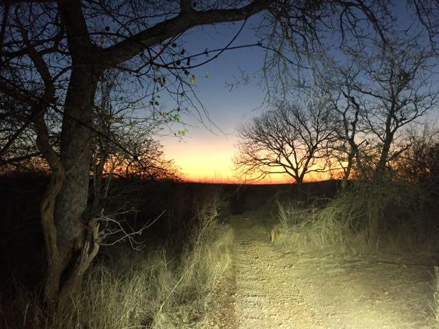 Hunt in Africa 64.jpg