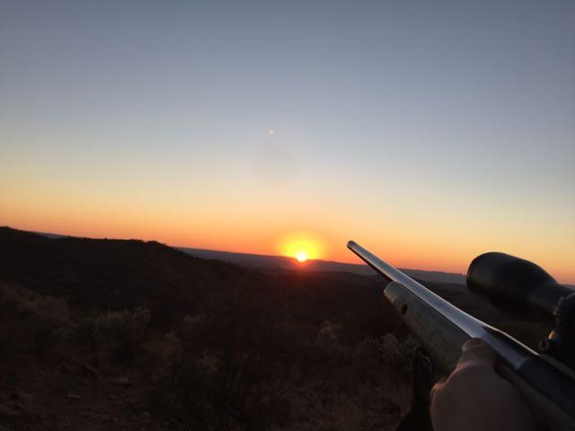 Hunt in Africa 36.jpg
