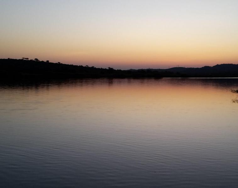 Elephant River Safari14.jpg