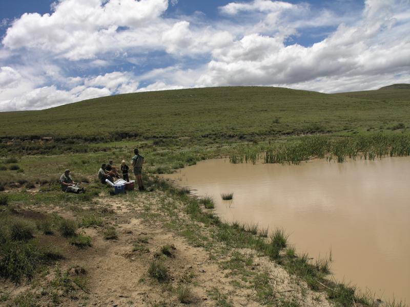 Eastern Cape Camp44.jpg