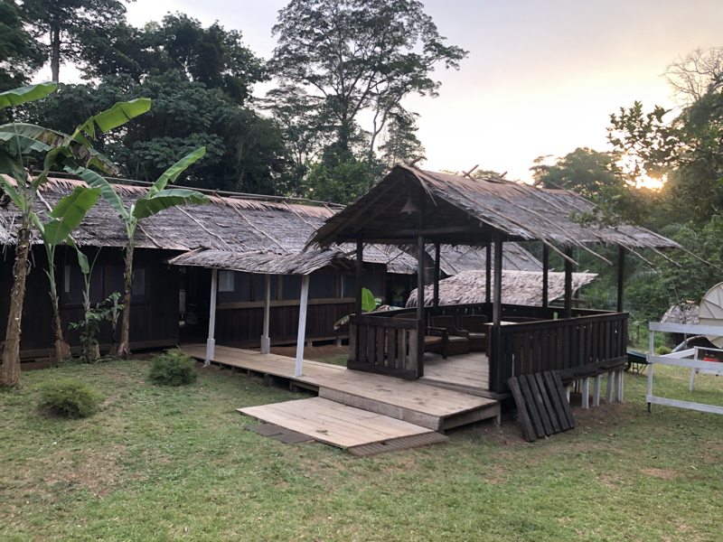 Cameroon Forrest CAMP2.jpg
