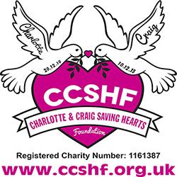 charity poster 500x500.jpg
