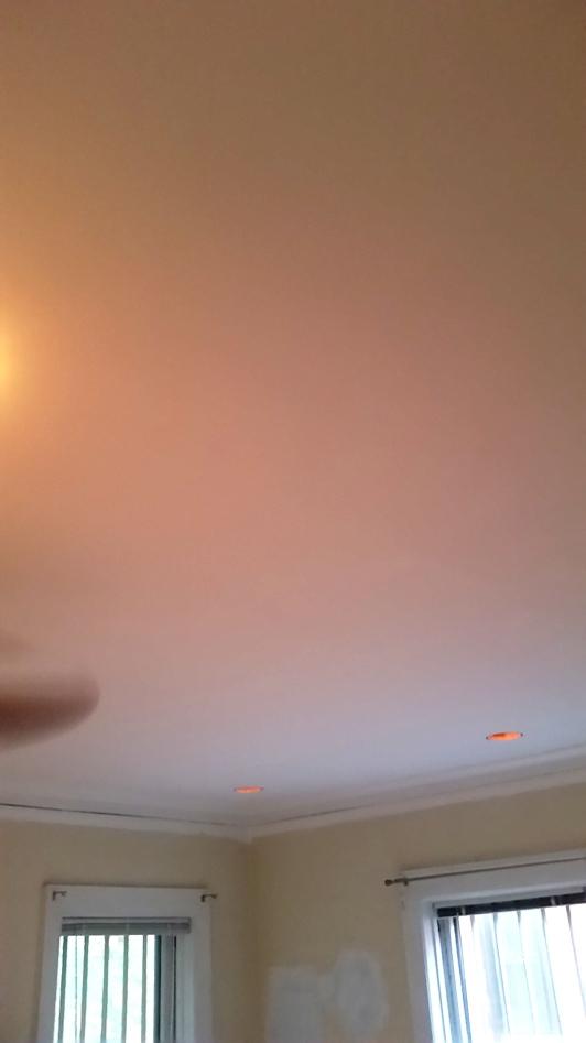 857 Margate - Living Room Ceiling (10).jpg