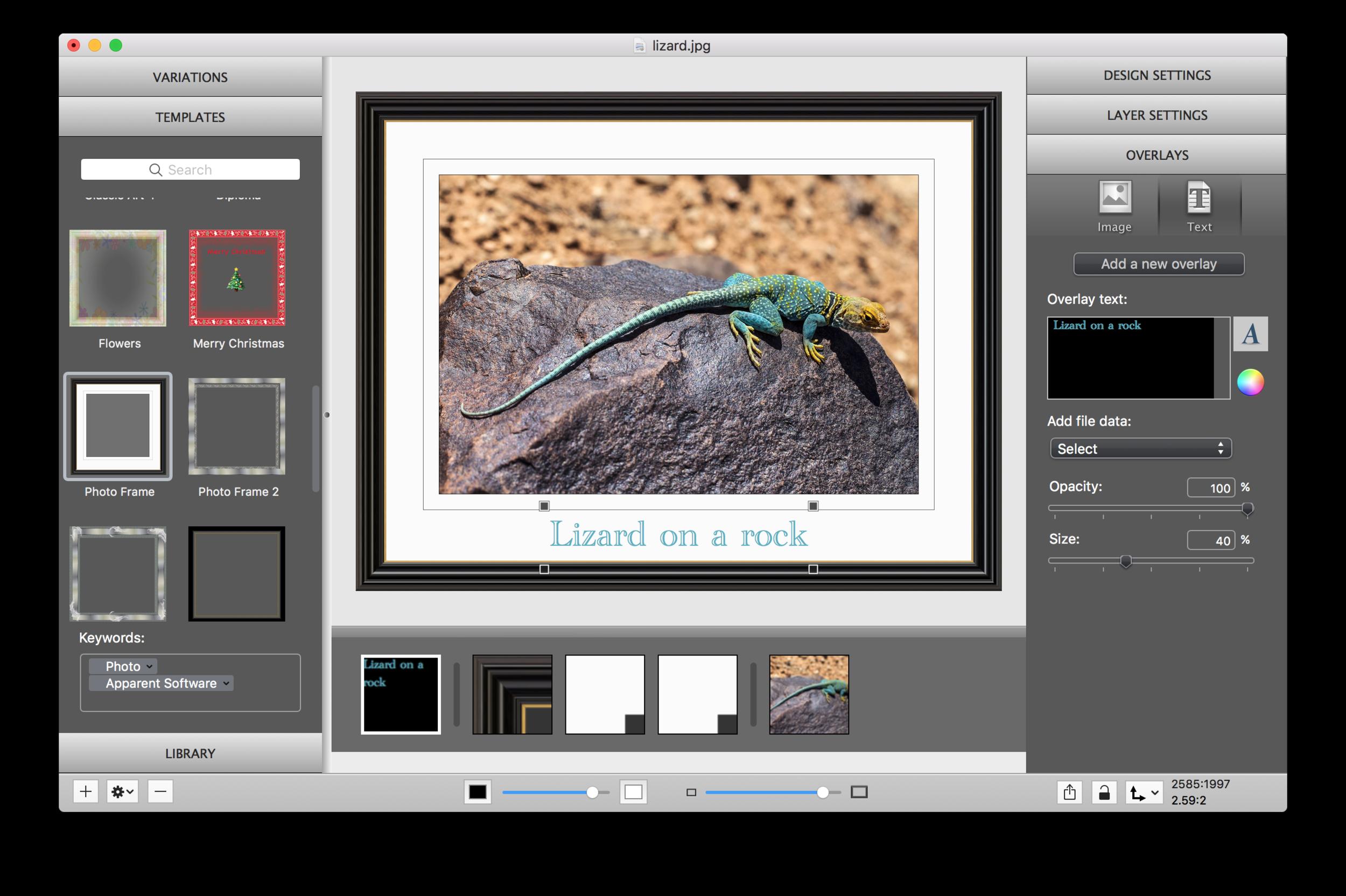 ImageFramer Text Overlay - SAC student discount.png