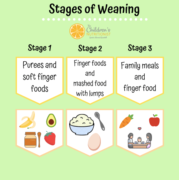 Stages of Weaning by Sarah Almond Bushell - the Children's Nutritionist