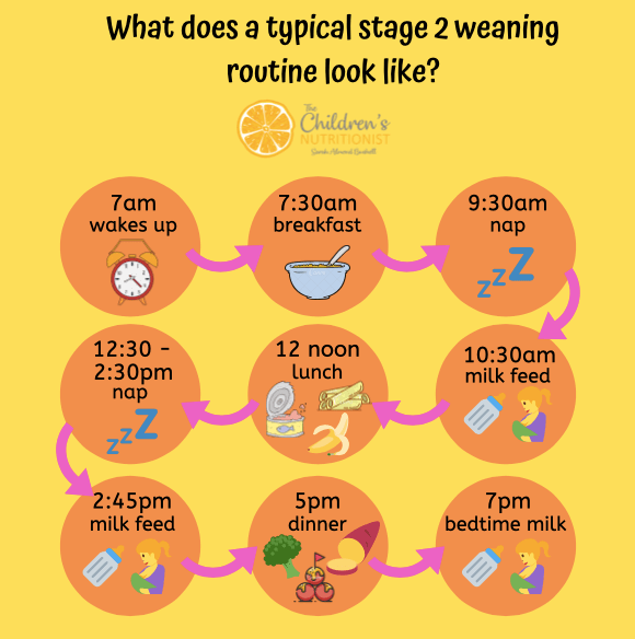 Stage 2 Routine by Sarah Almond Bushell - the Children's Nutritionist