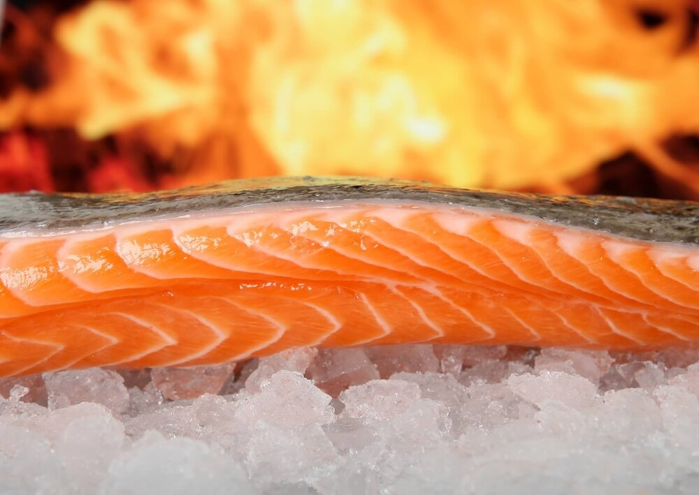 What do Omega 3 fats do for children by Sarah Almond Bushell - the Children's Nutritionist