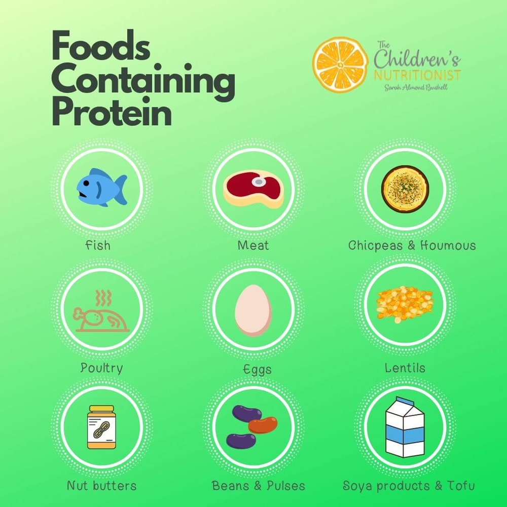 Foods Containing Protein by Sarah Almond Bushell - the Children's Nutritionist