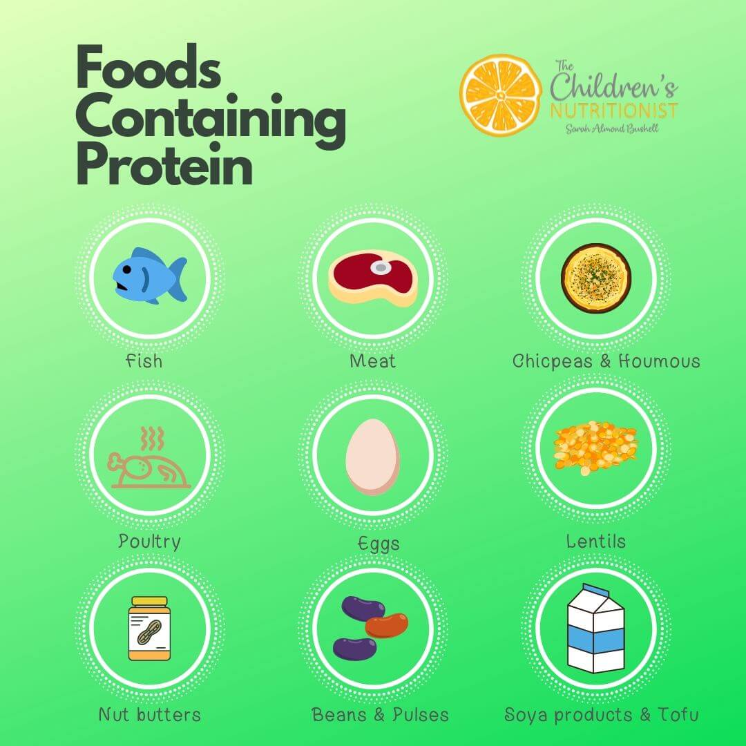Foods Containing Protein.jpg