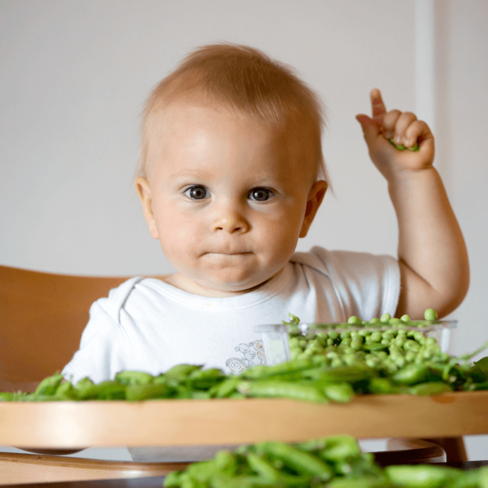 10 reasons why you should do an online baby weaning course by Sarah Almond Bushell - The Children's Nutritionist