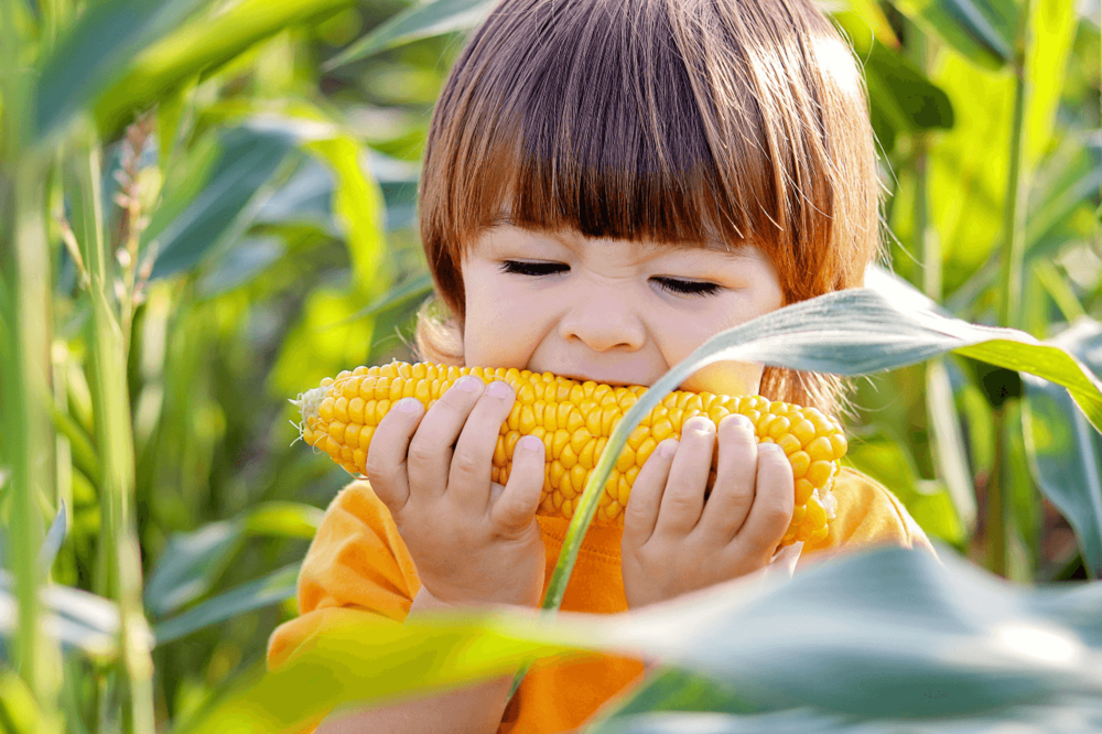 15 nutritious vegan meals for kids and how to make them balanced