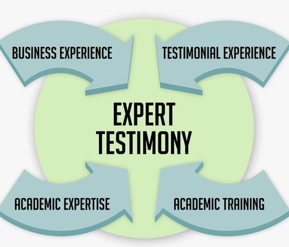 expert-testimony7501.jpg